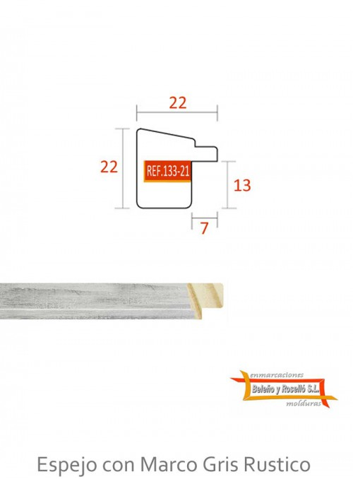 ESP+133-21