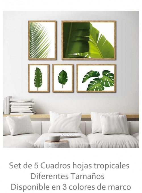 Combinación 5 cuadros hojas...